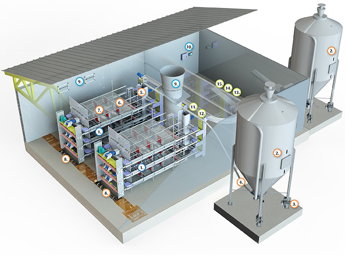 Configuration of Triotec egg production